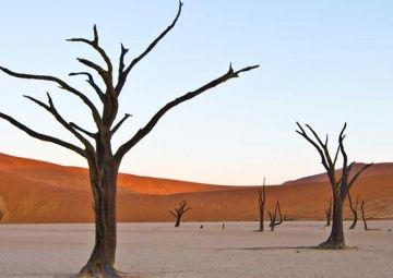 Group Tour - Cape Town, The Namibian Dunes and Victoria Falls